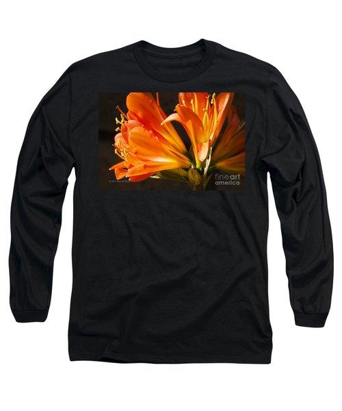 Kaffir Lily Glow Long Sleeve T-Shirt
