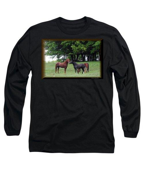 Kissing Cousins- The Paso Fino Stallions Long Sleeve T-Shirt