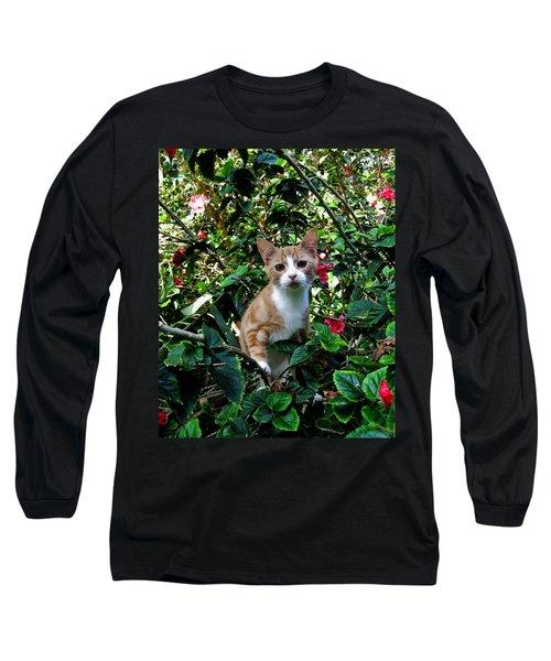 Kitten Long Sleeve T-Shirt by Pamela Walton