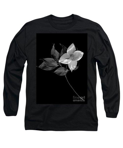 Kousa Dogwood In Black And White Long Sleeve T-Shirt