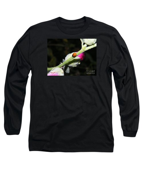 Long Sleeve T-Shirt featuring the photograph Ladybug Taking An Evening Stroll by Ann E Robson