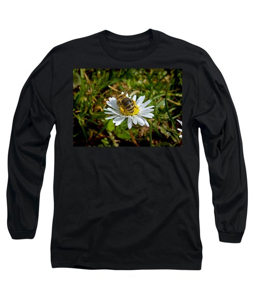 Long Sleeve T-Shirt featuring the photograph Landed by Nina Ficur Feenan
