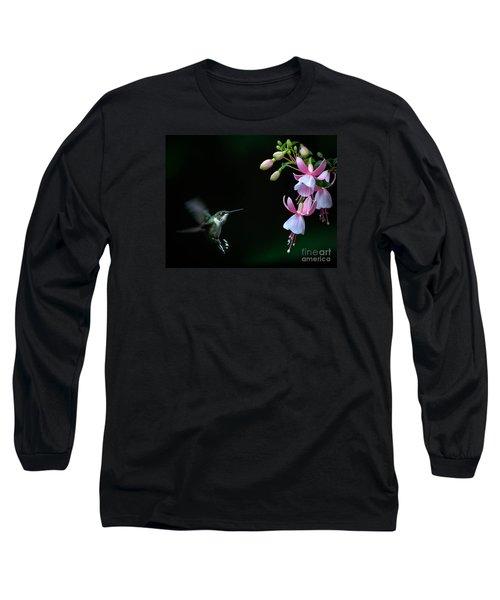 Last Light Long Sleeve T-Shirt by Amy Porter
