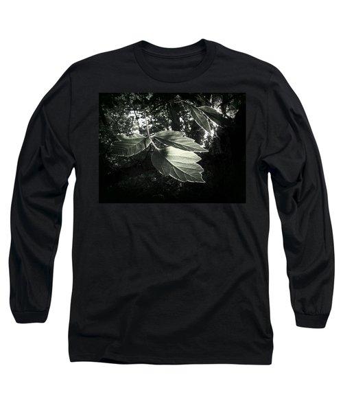 Last Rays II Long Sleeve T-Shirt