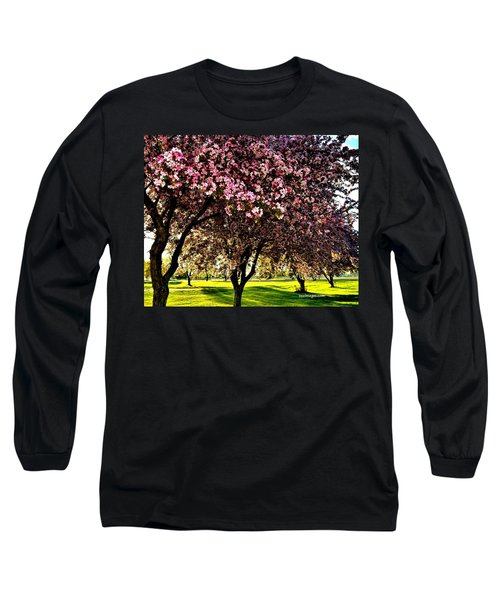 Late Afternoon At Lake Park Long Sleeve T-Shirt