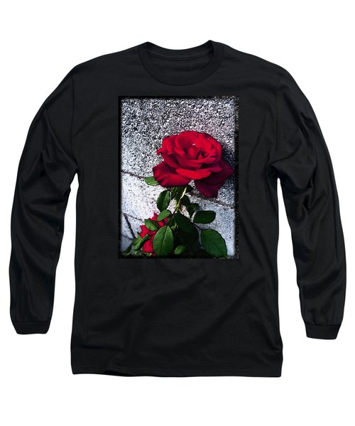 Long Sleeve T-Shirt featuring the photograph Late Summer Rose by Shawna Rowe