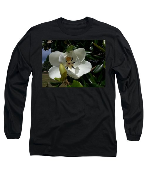 Lemon Magnolia Long Sleeve T-Shirt by Caryl J Bohn