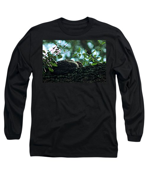 Let Sleeping Hawks Lie Long Sleeve T-Shirt by Greg Allore