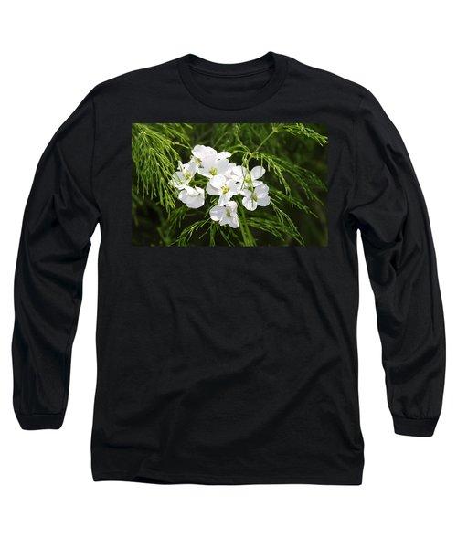 Light Of The White Long Sleeve T-Shirt