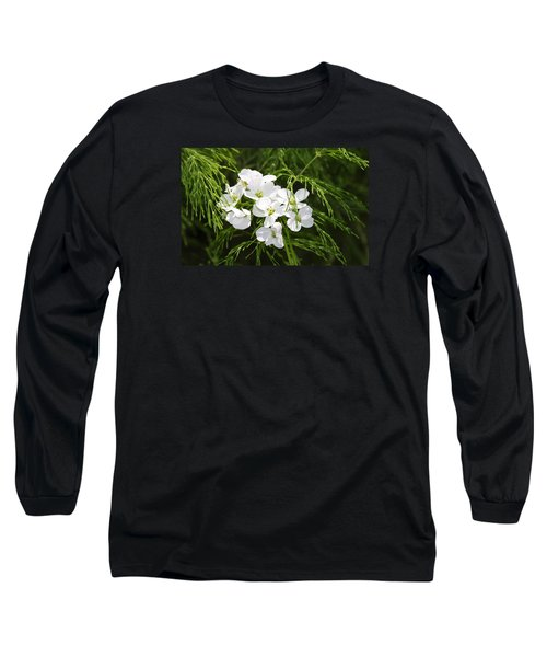 Light Of The White Long Sleeve T-Shirt