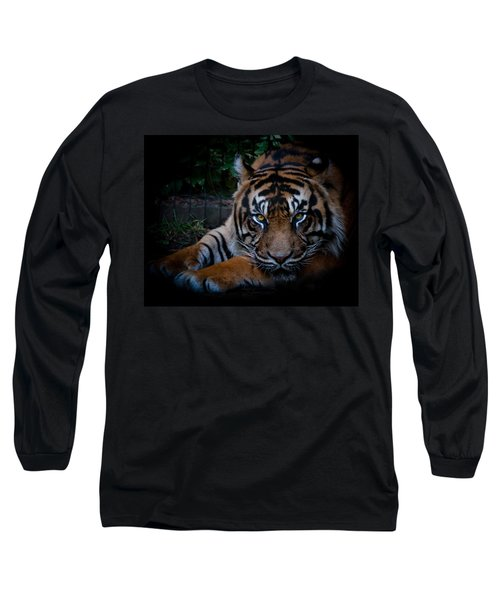 Like My Eyes? Long Sleeve T-Shirt