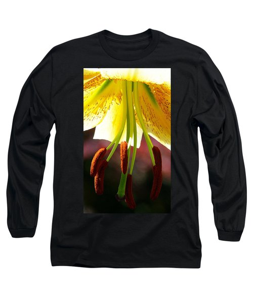 Lily Chandelier Long Sleeve T-Shirt