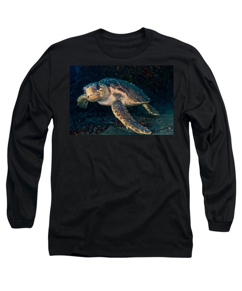 Loggerhead Turtle Under Ledge Long Sleeve T-Shirt
