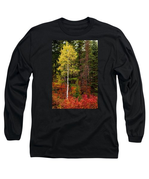 Lone Aspen In Fall Long Sleeve T-Shirt by Chad Dutson