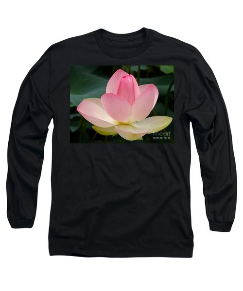 Long Sleeve T-Shirt featuring the photograph Lotus In Bloom by Byron Varvarigos