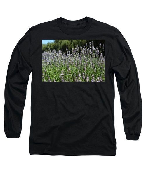 Lovely Lavender Long Sleeve T-Shirt