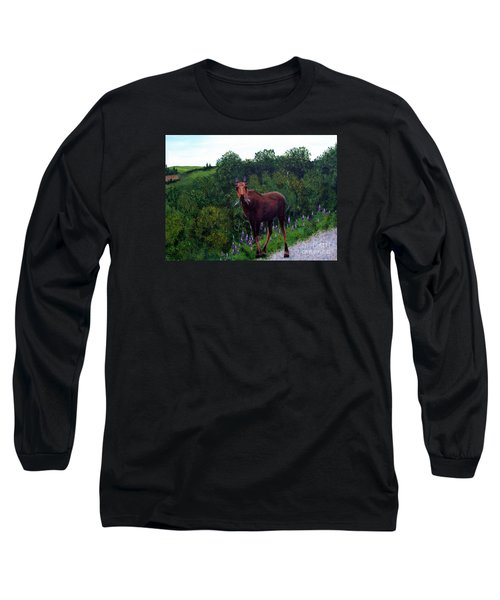 Lupine Loving Moose Long Sleeve T-Shirt by Barbara Griffin