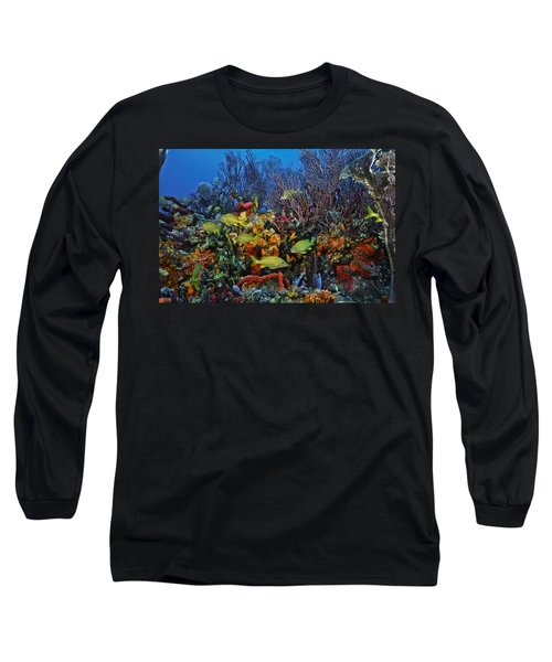 Lynns Reef On A Perfect Day Long Sleeve T-Shirt