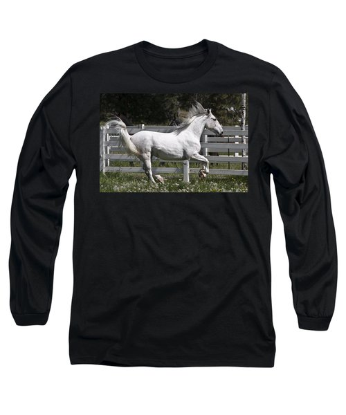Maestoso Aurorra Long Sleeve T-Shirt by Wes and Dotty Weber