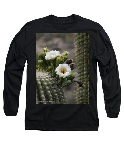 Long Sleeve T-Shirt featuring the photograph Magnificant Bloom Of The Saguaro by Lucinda Walter