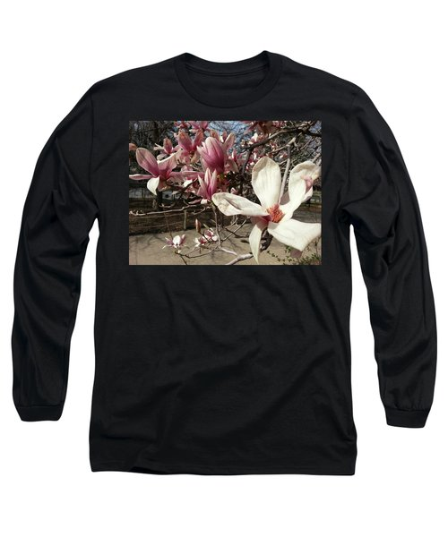Long Sleeve T-Shirt featuring the photograph Magnolia Branches by Caryl J Bohn