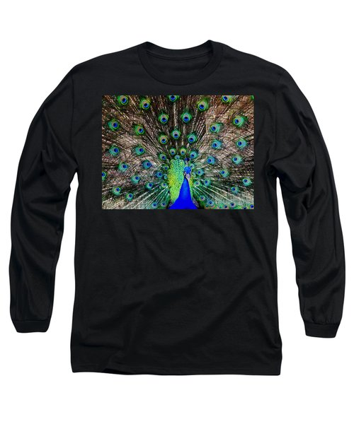 Majestic Blue Long Sleeve T-Shirt by Karen Wiles