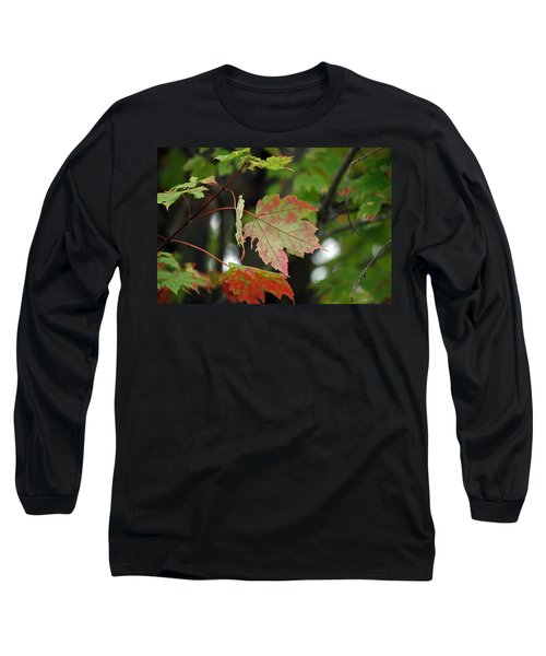 Maple Turning Long Sleeve T-Shirt