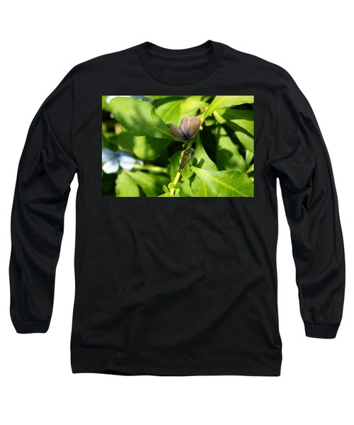 Mating Dance Long Sleeve T-Shirt by Greg Allore