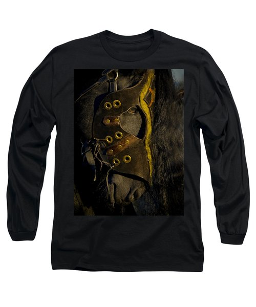 Medieval Stallion Long Sleeve T-Shirt by Wes and Dotty Weber