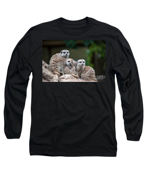 Meerkat Family Long Sleeve T-Shirt by Ray Warren