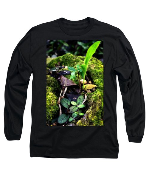 Long Sleeve T-Shirt featuring the photograph Miniature Garden by Jim Thompson