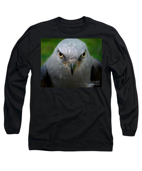 Mississippi Kite Stare Long Sleeve T-Shirt
