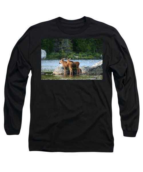 Moose Calves In Maine Long Sleeve T-Shirt