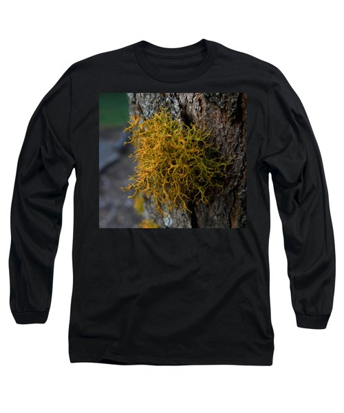 Moss On Tree Long Sleeve T-Shirt by Pamela Walton