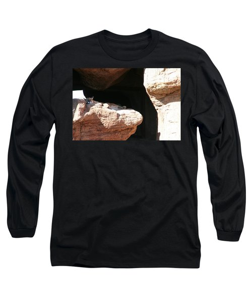 Long Sleeve T-Shirt featuring the photograph Mountain Lion by David S Reynolds