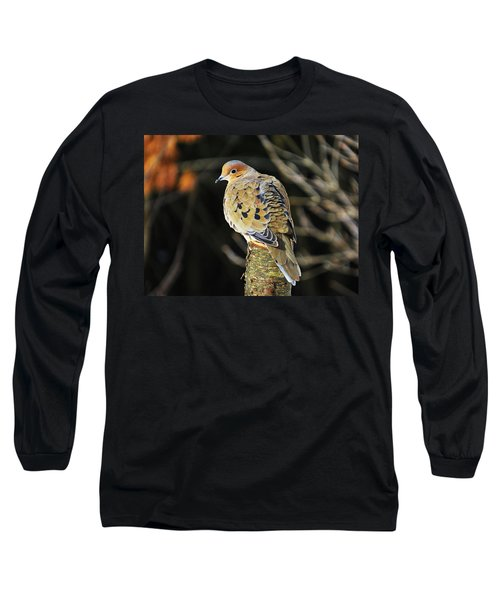Mourning Dove On Post Long Sleeve T-Shirt by MTBobbins Photography