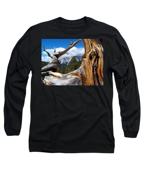 Mt. Charleston Thru A Tree Long Sleeve T-Shirt