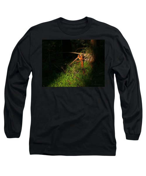 Long Sleeve T-Shirt featuring the photograph Natural Bands 2 by Evelyn Tambour