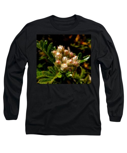 Nature's Drink Long Sleeve T-Shirt by Pamela Walton