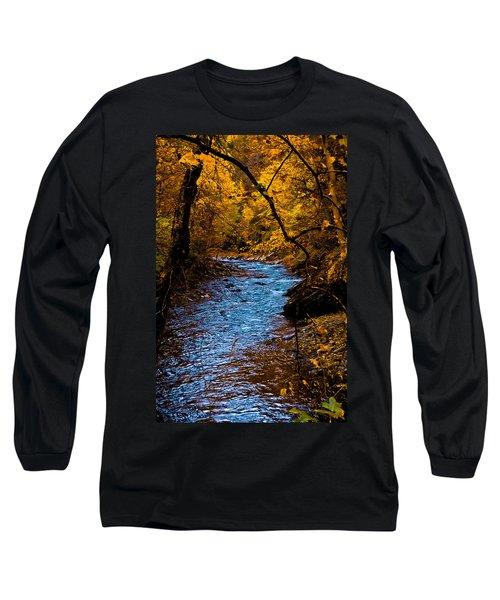 Natures Golden Secret Long Sleeve T-Shirt