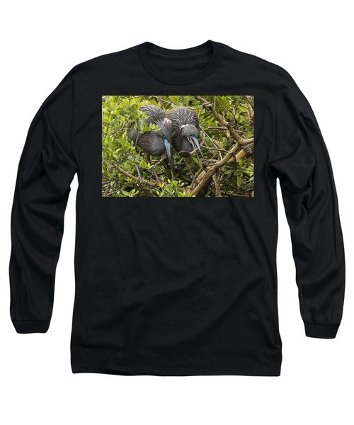 Long Sleeve T-Shirt featuring the photograph Nest Building by Priscilla Burgers