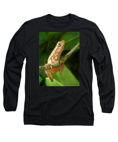 Northern Spring Peeper Long Sleeve T-Shirt by William Tanneberger
