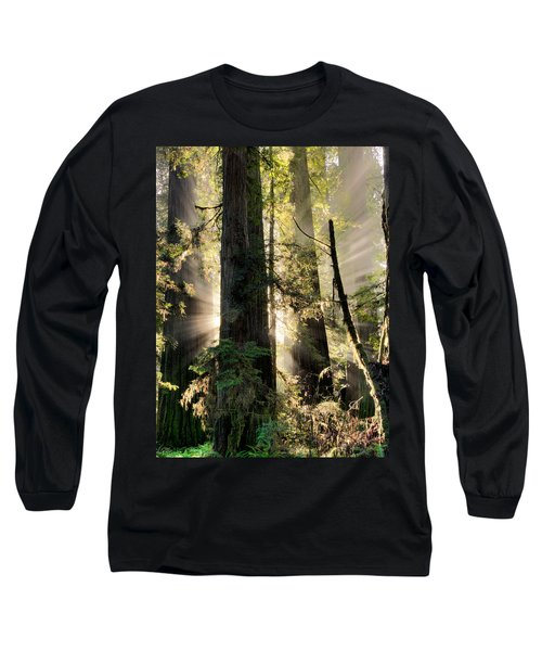 Old Growth Forest Light Long Sleeve T-Shirt