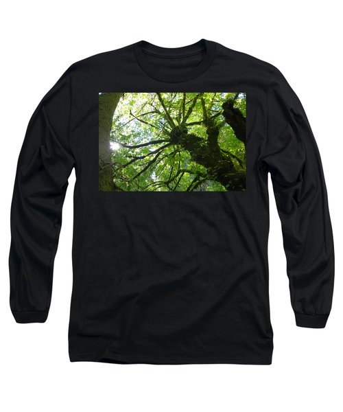 Old Growth Tree In Forest Long Sleeve T-Shirt
