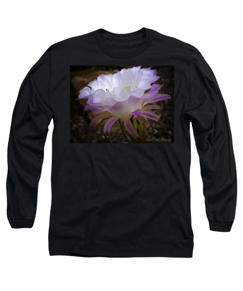 Long Sleeve T-Shirt featuring the photograph On The Edge by Lucinda Walter