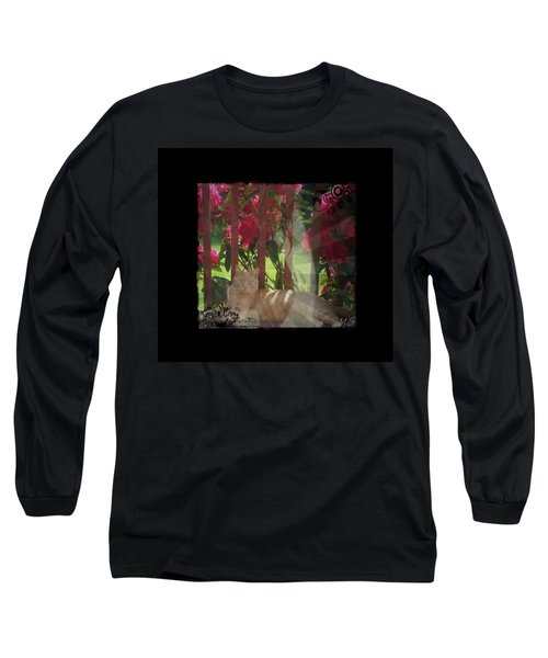 Long Sleeve T-Shirt featuring the photograph Orange Cat In The Shade by Absinthe Art By Michelle LeAnn Scott