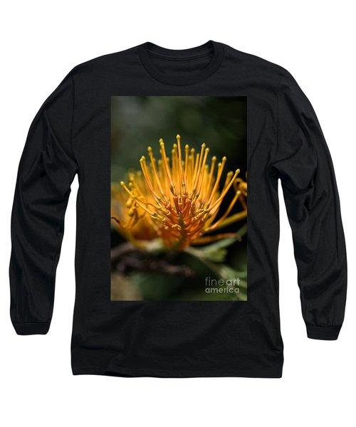 Orange Grevillea Long Sleeve T-Shirt