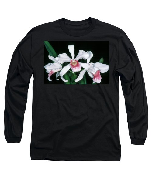 Orchid 10 Long Sleeve T-Shirt by Andy Shomock