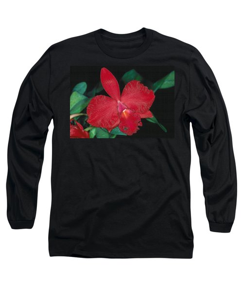 Orchid 12 Long Sleeve T-Shirt by Andy Shomock