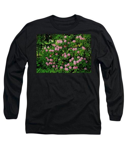 Oregon Azaleas Long Sleeve T-Shirt by Ed  Riche